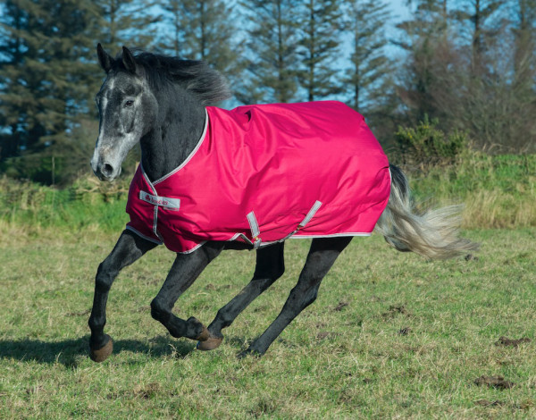 Bucas FREEDOM Turnout Light - Persian red