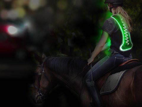Animal light Leucht-Sicherheitsweste Flex